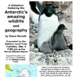 Antarctic Wildlife and Geography Presentation on Tuesday, January 3, 2012 at the Mount Shasta Resort