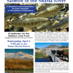 Strategies for Restoration of Salmon in the Shasta River, April 3, 2013