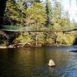 Sacramento River Trail Hike – Saturday May 2, 2015