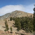 Hike to the Deadfall Lakes and Mount Eddy — Saturday August 13, 2016