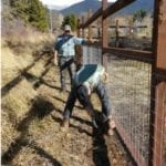 FIRST PHASE OF SISKIYOU LAND TRUST GARDEN FENCE FINISHED