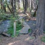 Introducing a New Page — Town Trails
