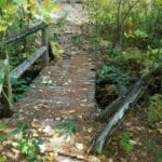 MSTA TRAIL CREW FINISHES CONSTRUCTION OF BRIDGE IN CASTLE CRAGS STATE PARK
